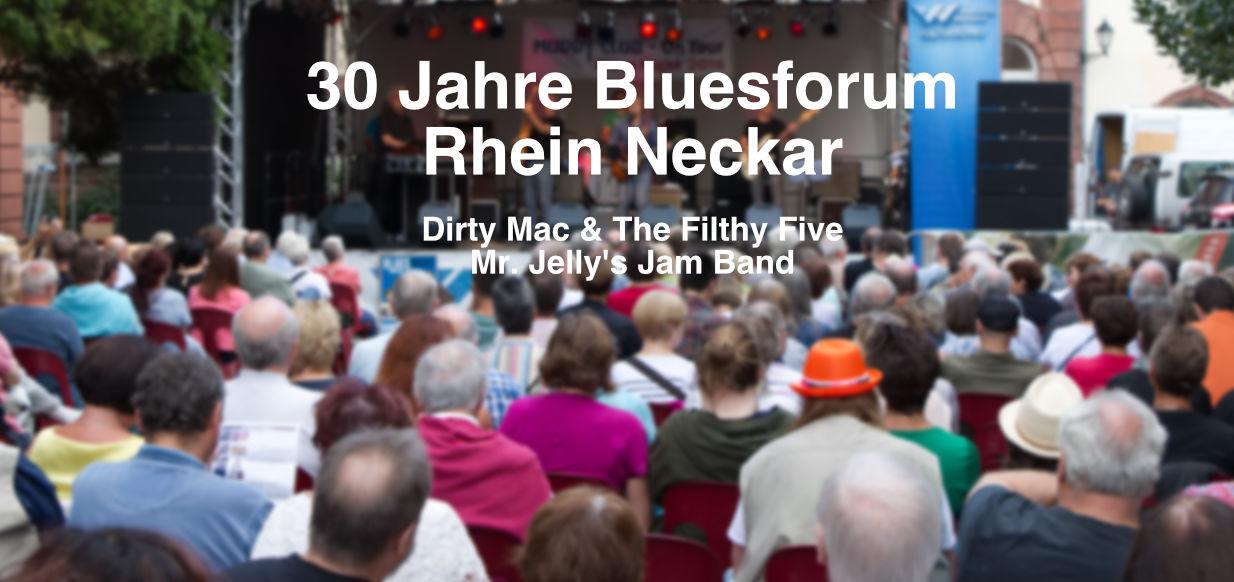 30 Jahre Bluesforum Rhein Neckar